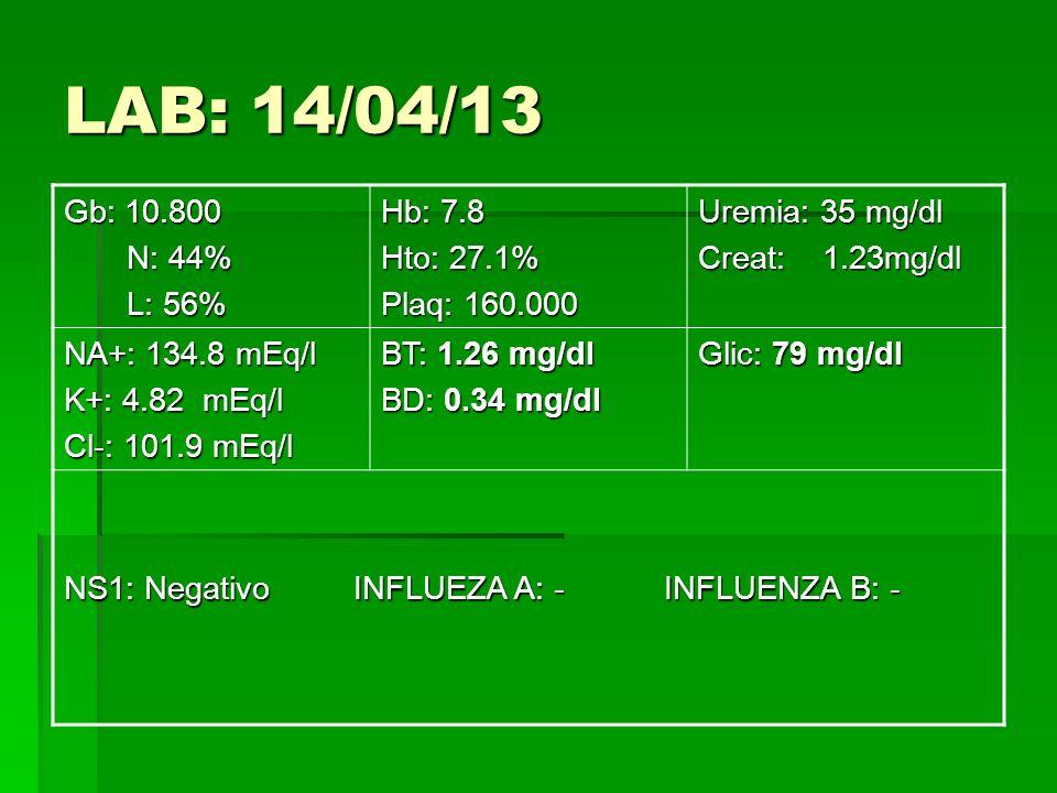 LAB: 14/04/13 Gb: 10.800 N: 44% N: 44% L: 56% L: 56% Hb: 7.8 Hto: 27.1% Plaq: 160.000 Uremia: 35 mg/dl Creat: 1.23mg/dl NA+: 134.8 mEq/l K+: 4.82 mEq/