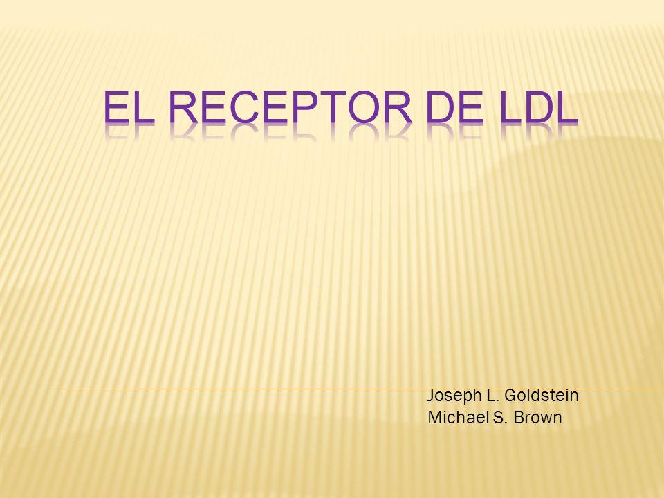 ¿Dónde se degrada el LDL en la célula y cómo ésto suprime la HMG-CoA reductasa.