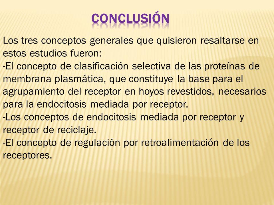 Los tres conceptos generales que quisieron resaltarse en estos estudios fueron: -El concepto de clasificación selectiva de las proteínas de membrana p
