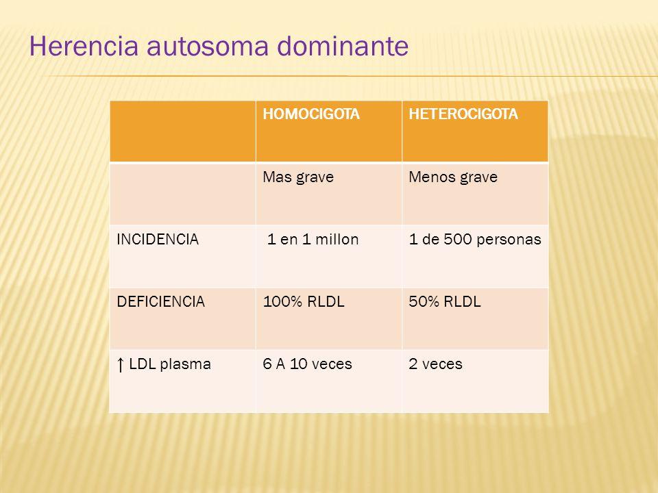 Herencia autosoma dominante HOMOCIGOTAHETEROCIGOTA Mas graveMenos grave INCIDENCIA 1 en 1 millon1 de 500 personas DEFICIENCIA100% RLDL50% RLDL LDL pla