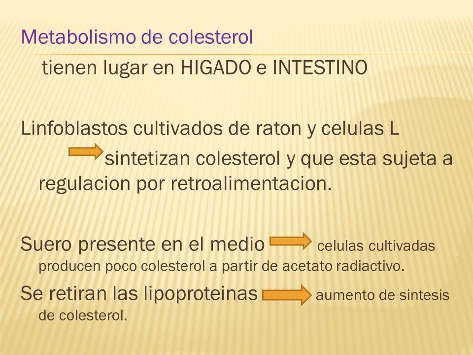 Metabolismo de colesterol tienen lugar en HIGADO e INTESTINO Linfoblastos cultivados de raton y celulas L sintetizan colesterol y que esta sujeta a re
