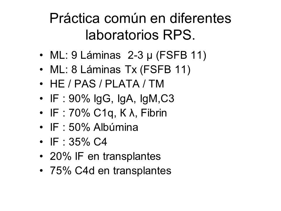 Práctica común en diferentes laboratorios RPS. ML: 9 Láminas 2-3 μ (FSFB 11) ML: 8 Láminas Tx (FSFB 11) HE / PAS / PLATA / TM IF : 90% IgG, IgA, IgM,C