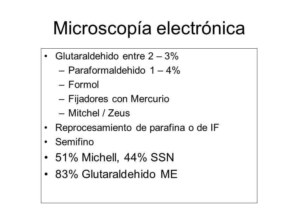 Microscopía electrónica Glutaraldehido entre 2 – 3% –Paraformaldehido 1 – 4% –Formol –Fijadores con Mercurio –Mitchel / Zeus Reprocesamiento de parafi