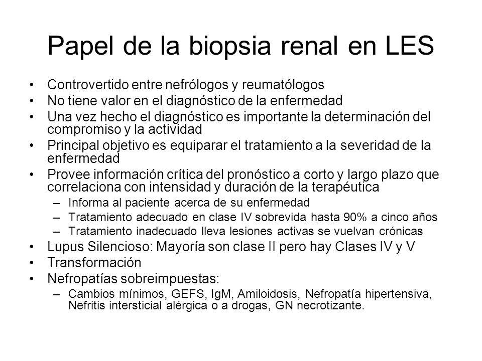 Papel de la biopsia renal en LES Controvertido entre nefrólogos y reumatólogos No tiene valor en el diagnóstico de la enfermedad Una vez hecho el diag