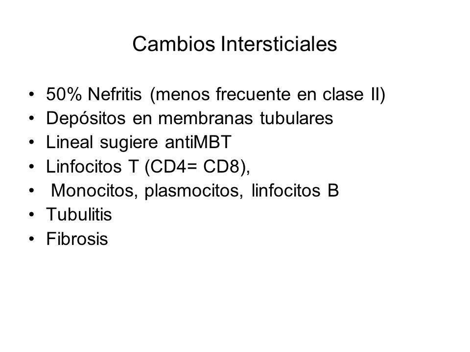 Cambios Intersticiales 50% Nefritis (menos frecuente en clase II) Depósitos en membranas tubulares Lineal sugiere antiMBT Linfocitos T (CD4= CD8), Mon