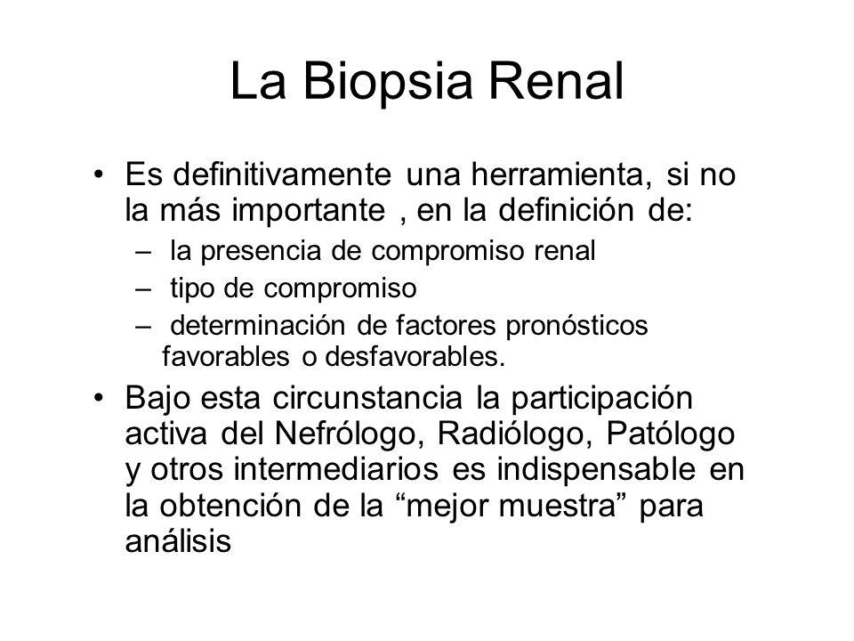 La Biopsia Renal Es definitivamente una herramienta, si no la más importante, en la definición de: – la presencia de compromiso renal – tipo de compro