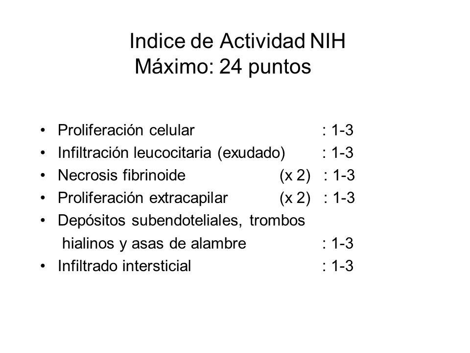 Indice de Actividad NIH Máximo: 24 puntos Proliferación celular : 1-3 Infiltración leucocitaria (exudado): 1-3 Necrosis fibrinoide (x 2) : 1-3 Prolife
