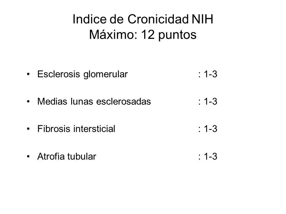 Indice de Cronicidad NIH Máximo: 12 puntos Esclerosis glomerular : 1-3 Medias lunas esclerosadas: 1-3 Fibrosis intersticial: 1-3 Atrofia tubular: 1-3