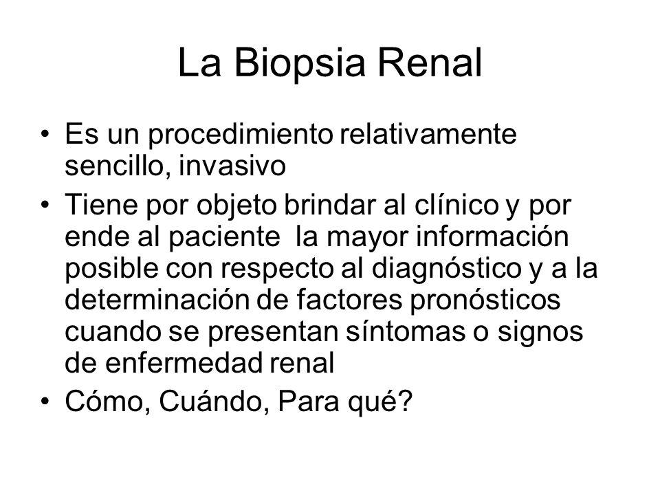 La Biopsia Renal Es un procedimiento relativamente sencillo, invasivo Tiene por objeto brindar al clínico y por ende al paciente la mayor información