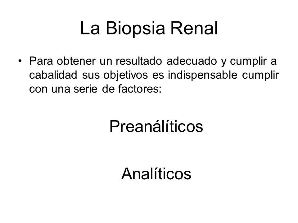 Fase analítica: Interpretación Glomérulo Túbulo Intersticio Vasos 80% del volumen renal Componentes celulares –Fibroblastos, células intersticiales ricas en lípidos, monocitos –Células dendríticas Matriz Injuria primaria o secundaria Buena predicción de la severidad de la disfunción renal