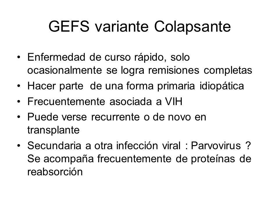 GEFS variante Colapsante Enfermedad de curso rápido, solo ocasionalmente se logra remisiones completas Hacer parte de una forma primaria idiopática Fr