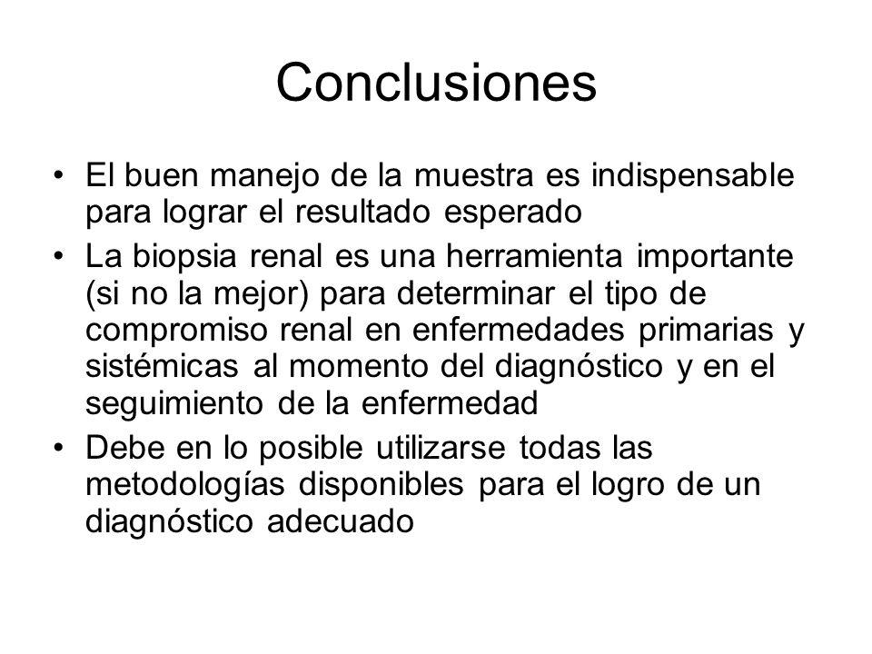 Conclusiones El buen manejo de la muestra es indispensable para lograr el resultado esperado La biopsia renal es una herramienta importante (si no la