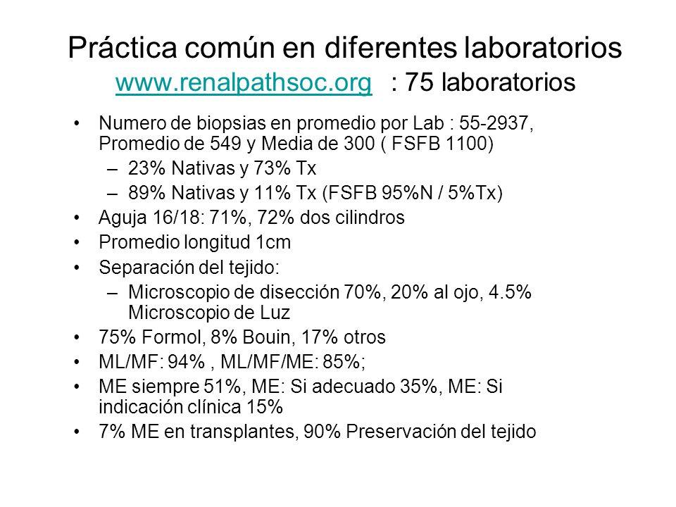 Práctica común en diferentes laboratorios www.renalpathsoc.org : 75 laboratorios www.renalpathsoc.org Numero de biopsias en promedio por Lab : 55-2937