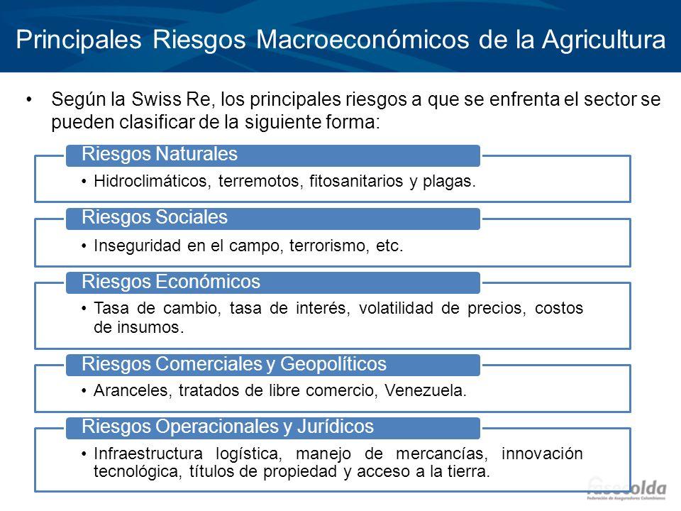 Principales Riesgos Macroeconómicos de la Agricultura Según la Swiss Re, los principales riesgos a que se enfrenta el sector se pueden clasificar de l