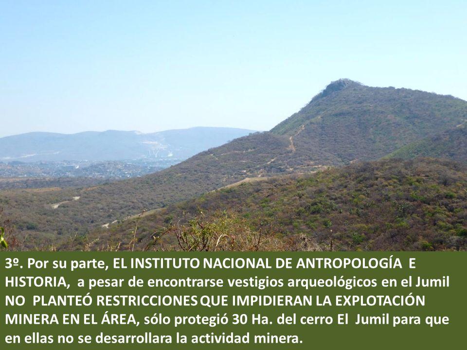 . 3º. Por su parte, EL INSTITUTO NACIONAL DE ANTROPOLOGÍA E HISTORIA, a pesar de encontrarse vestigios arqueológicos en el Jumil NO PLANTEÓ RESTRICCIO