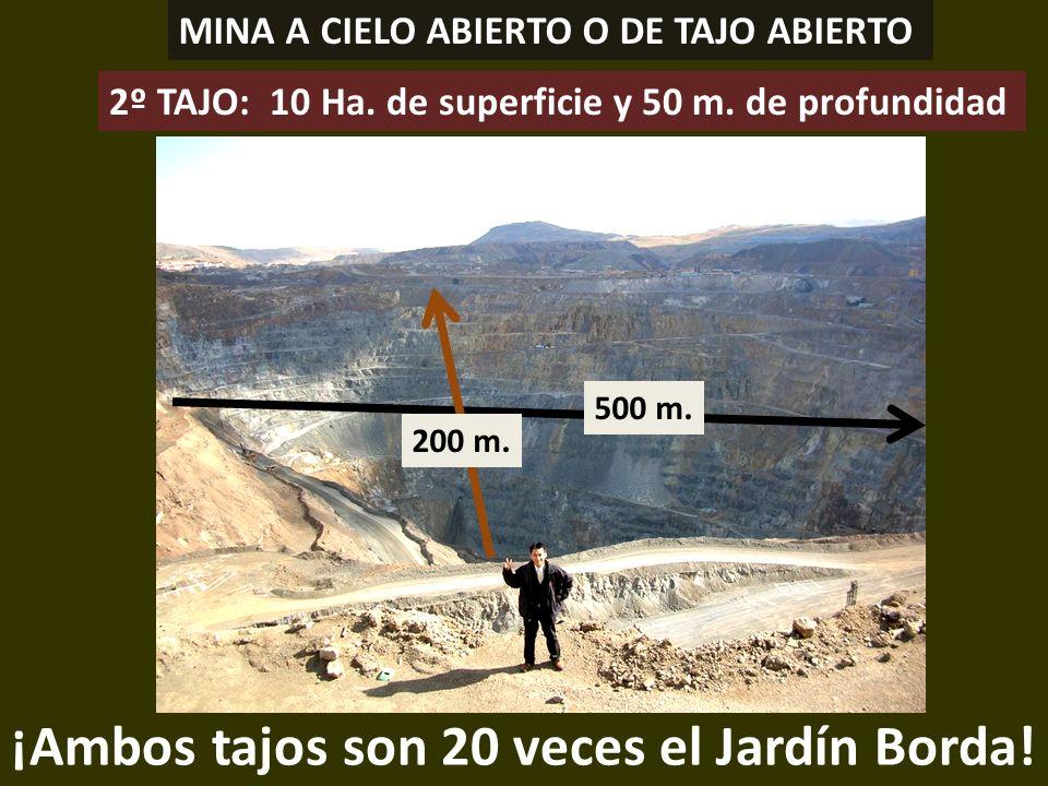 . ¡Ambos tajos son 20 veces el Jardín Borda! MINA A CIELO ABIERTO O DE TAJO ABIERTO 500 m. 200 m. 2º TAJO: 10 Ha. de superficie y 50 m. de profundidad