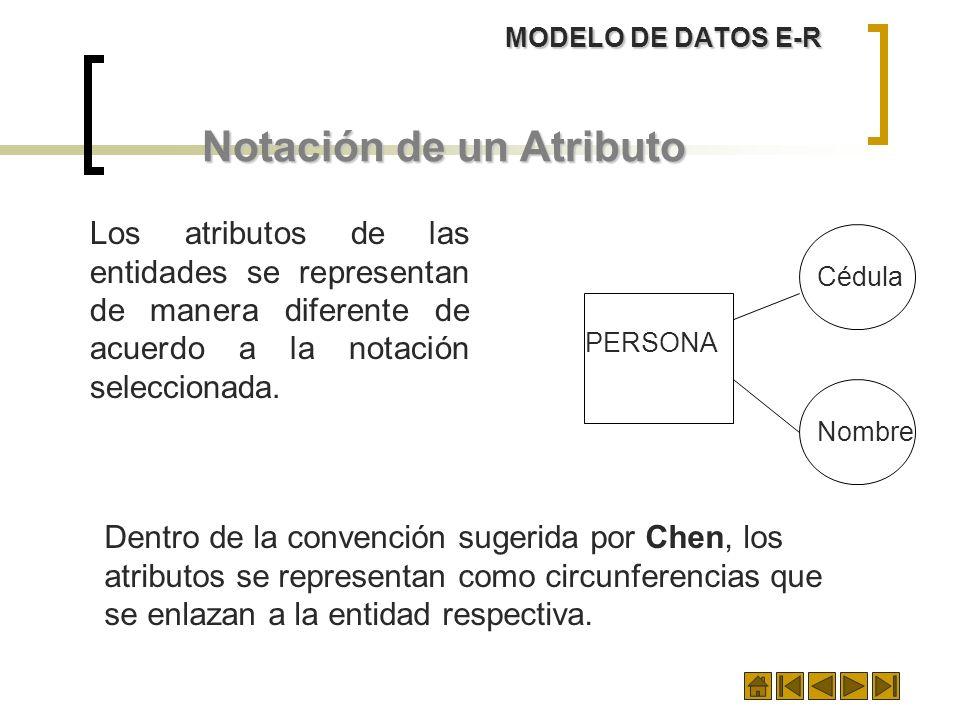 MODELO DE DATOS E-R Notación de un Atributo Cédula Nombre PERSONA Los atributos de las entidades se representan de manera diferente de acuerdo a la no