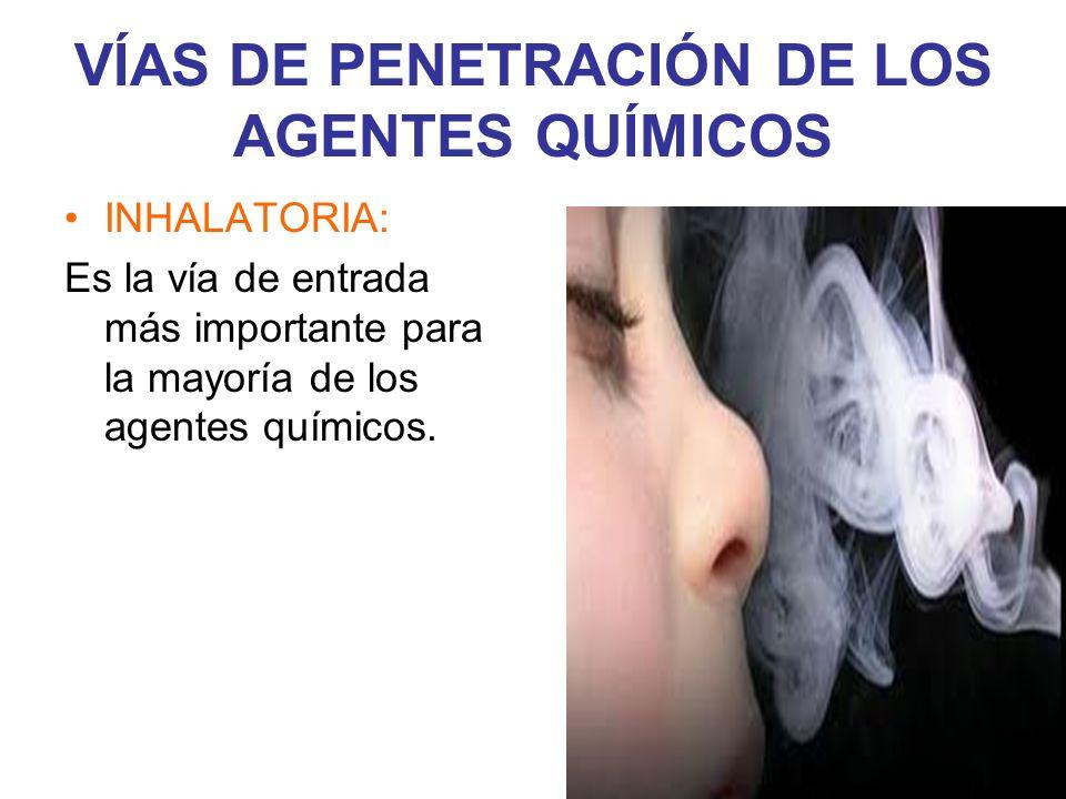 VÍAS DE PENETRACIÓN DE LOS AGENTES QUÍMICOS INHALATORIA: Es la vía de entrada más importante para la mayoría de los agentes químicos.