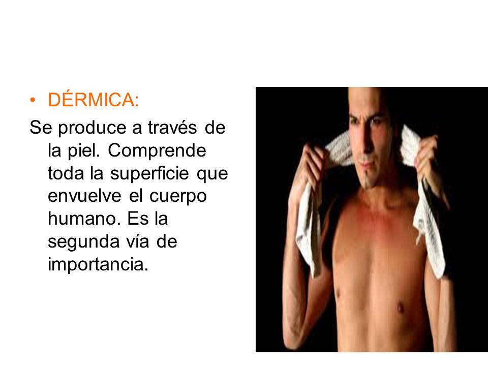 DÉRMICA: Se produce a través de la piel. Comprende toda la superficie que envuelve el cuerpo humano. Es la segunda vía de importancia.