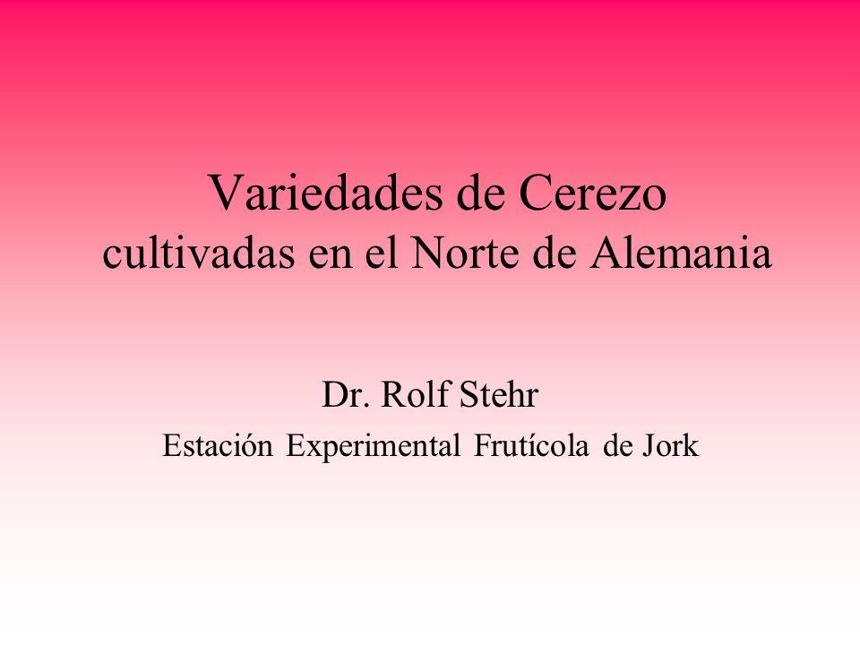 Variedades de Cerezo cultivadas en el Norte de Alemania Dr. Rolf Stehr Estación Experimental Frutícola de Jork