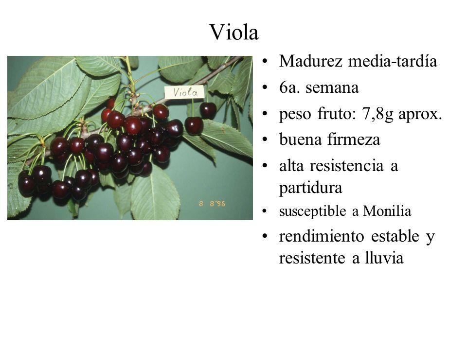 Viola Madurez media-tardía 6a. semana peso fruto: 7,8g aprox. buena firmeza alta resistencia a partidura susceptible a Monilia rendimiento estable y r