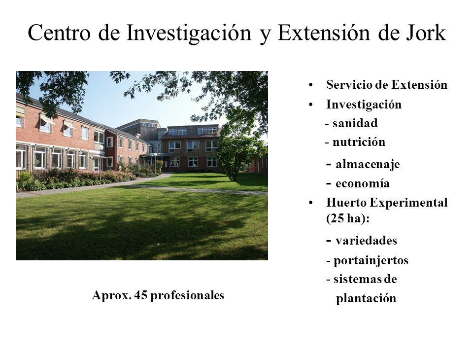 Centro de Investigación y Extensión de Jork Servicio de Extensión Investigación - sanidad - nutrición - almacenaje - economía Huerto Experimental (25