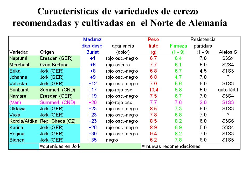 Características de variedades de cerezo recomendadas y cultivadas en el Norte de Alemania