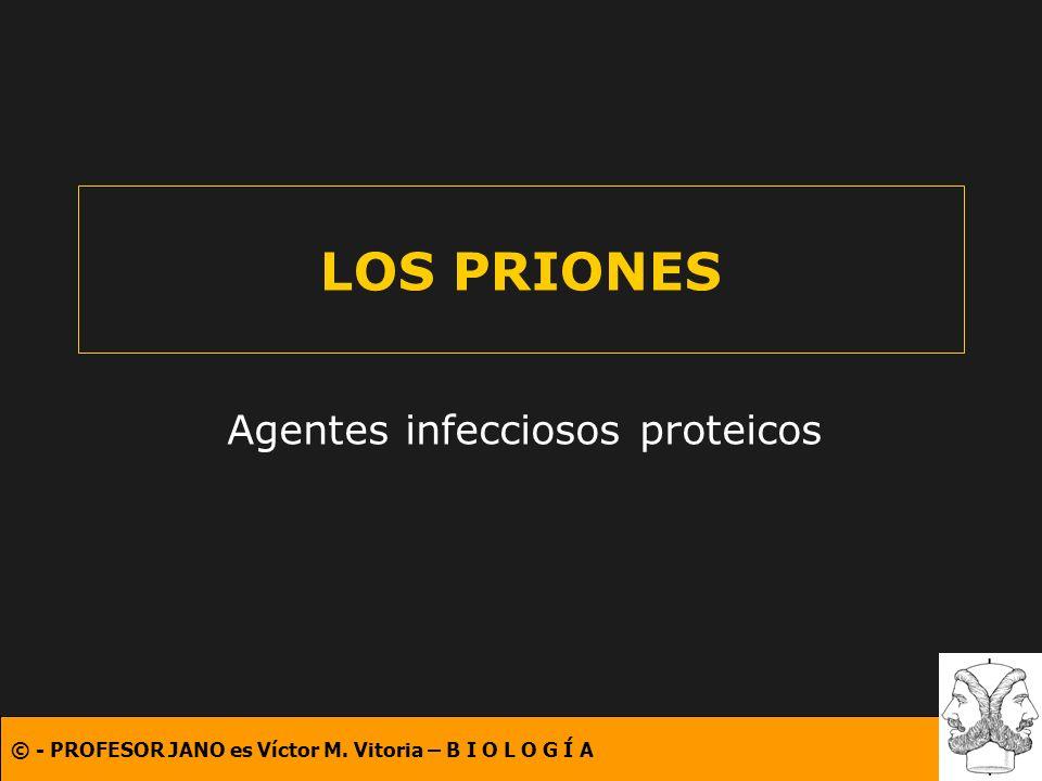 © - PROFESOR JANO es Víctor M. Vitoria – B I O L O G Í A LOS PRIONES Agentes infecciosos proteicos