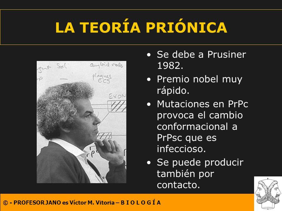 © - PROFESOR JANO es Víctor M. Vitoria – B I O L O G Í A LA TEORÍA PRIÓNICA Se debe a Prusiner 1982. Premio nobel muy rápido. Mutaciones en PrPc provo