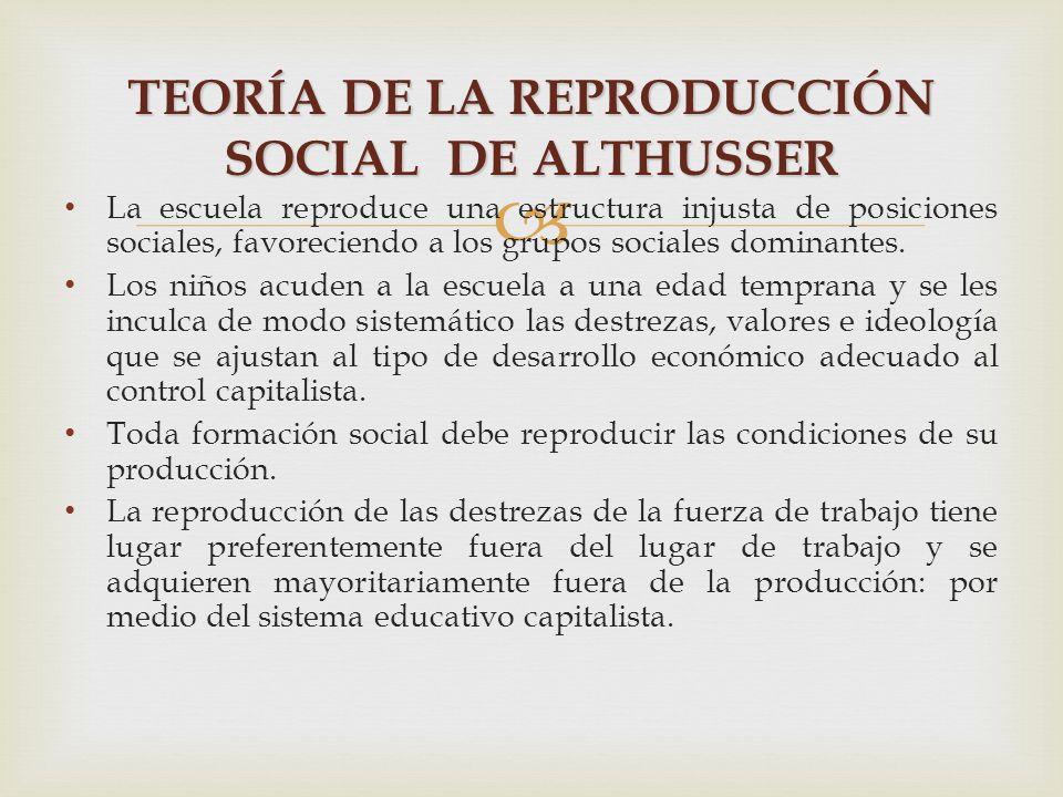La división escolar : Red profesional y Red académica.