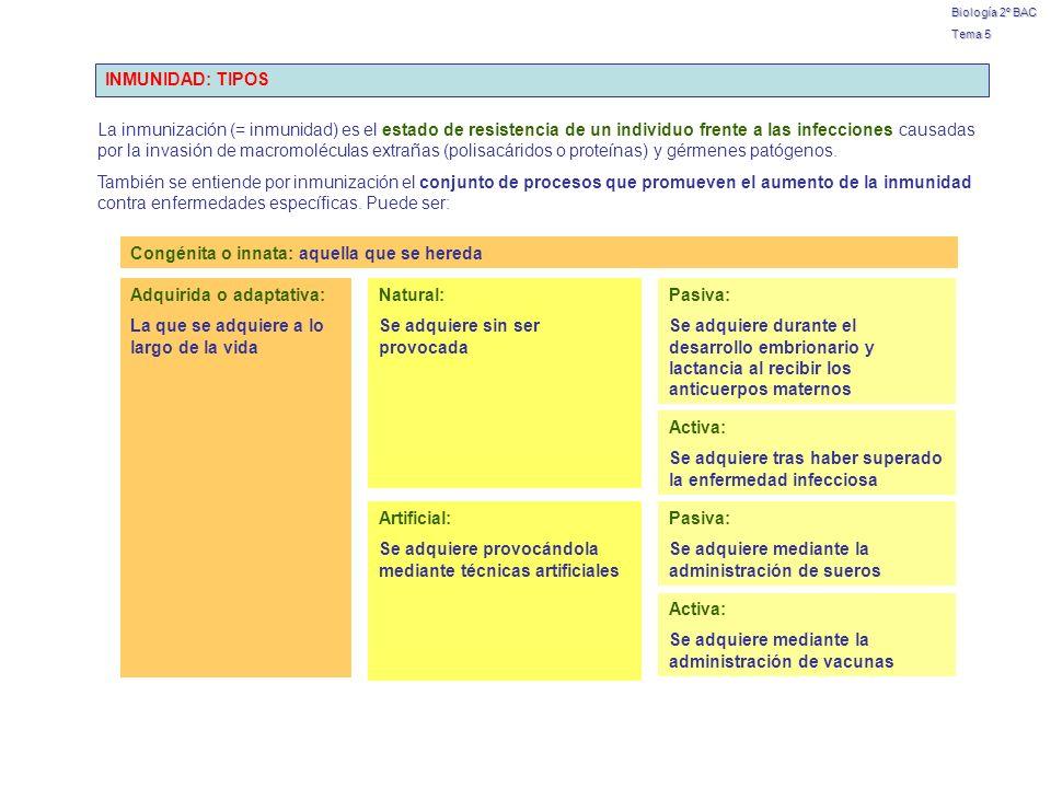 Biología 2º BAC Tema 5 INMUNIDAD: TIPOS La inmunización (= inmunidad) es el estado de resistencia de un individuo frente a las infecciones causadas po