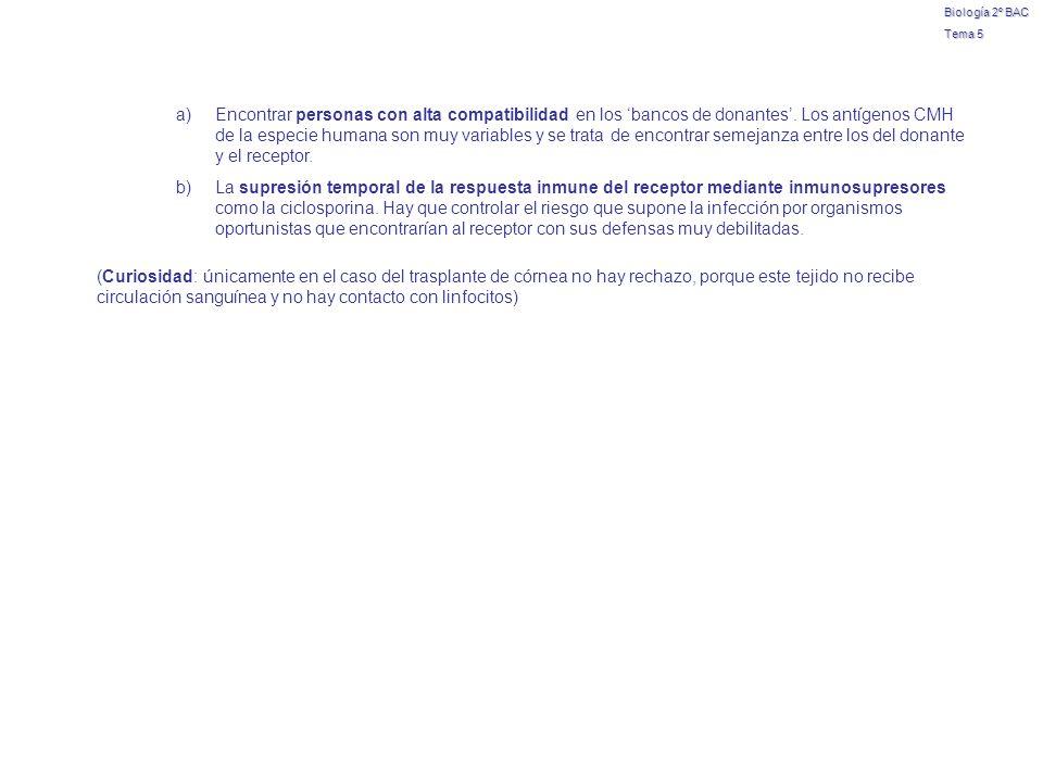 Biología 2º BAC Tema 5 a)Encontrar personas con alta compatibilidad en los bancos de donantes. Los antígenos CMH de la especie humana son muy variable