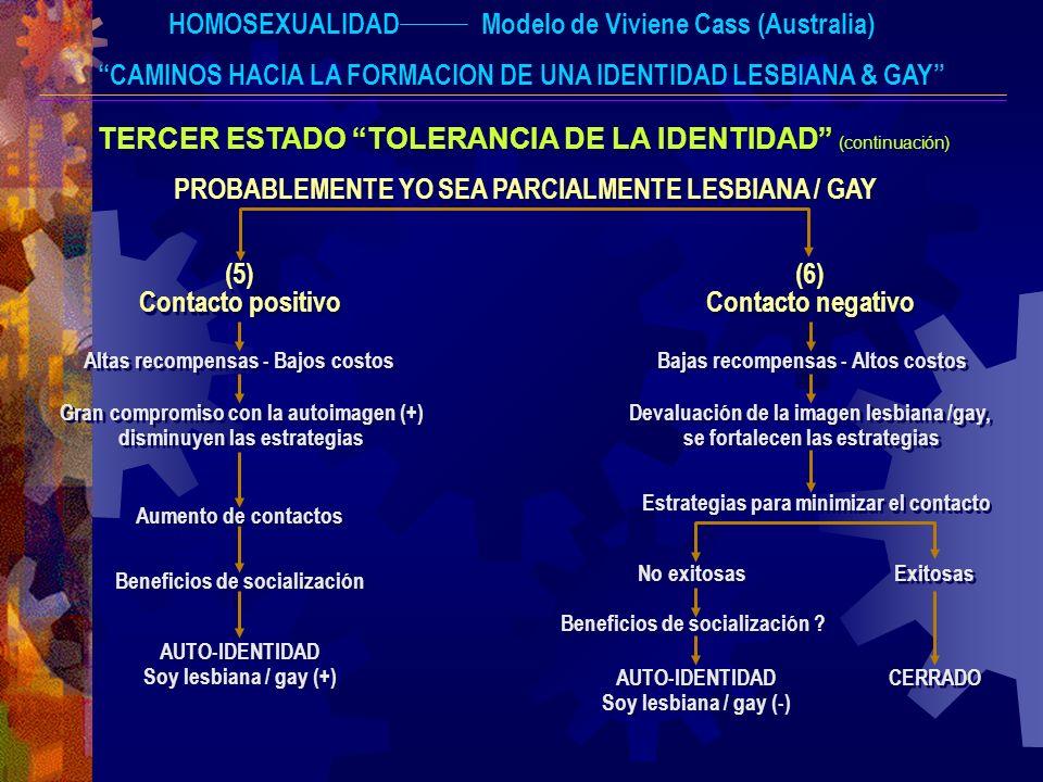 HOMOSEXUALIDADModelo de Viviene Cass (Australia) CAMINOS HACIA LA FORMACION DE UNA IDENTIDAD LESBIANA & GAY TERCER ESTADO TOLERANCIA DE LA IDENTIDAD (