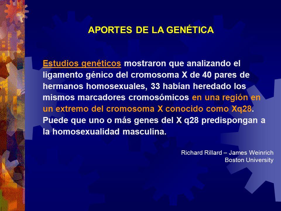 APORTES DE LA GENÉTICA Estudios genéticos mostraron que analizando el ligamento génico del cromosoma X de 40 pares de hermanos homosexuales, 33 habían