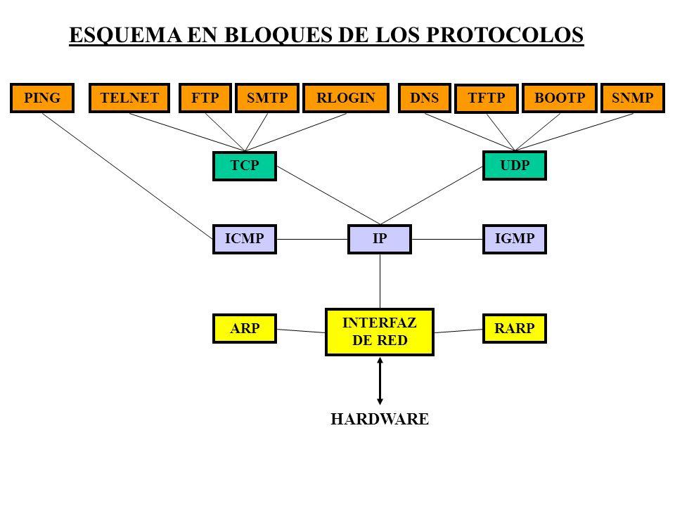 ESQUEMA EN BLOQUES DE LOS PROTOCOLOS PINGTELNETFTPSMTPRLOGINDNS TFTP BOOTPSNMP TCP UDP ICMPIPIGMP ARP INTERFAZ DE RED RARP HARDWARE
