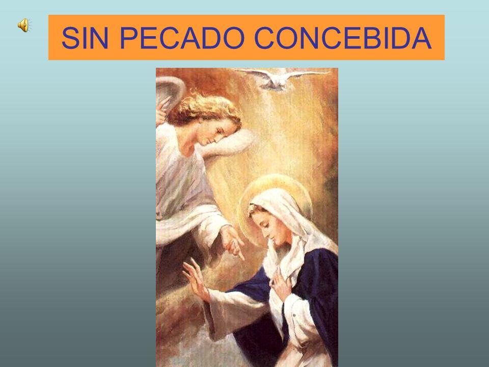 Oración a la Inmaculada Virgen María Santísima Virgen, yo creo y confieso vuestra Santa e Inmaculada Concepción pura y sin mancha.