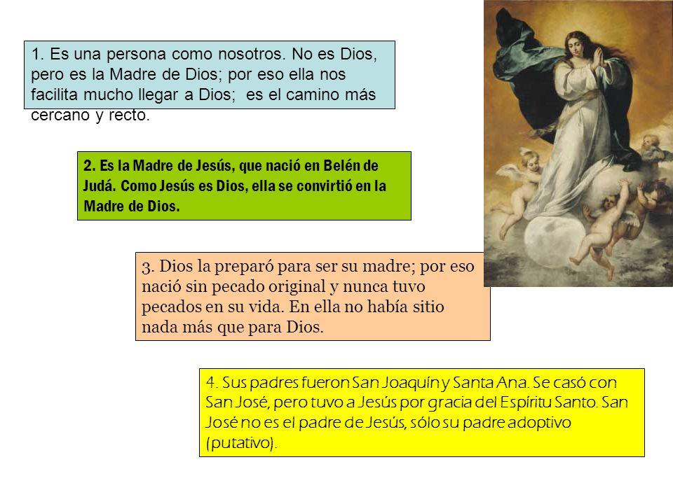 1. Es una persona como nosotros. No es Dios, pero es la Madre de Dios; por eso ella nos facilita mucho llegar a Dios; es el camino más cercano y recto
