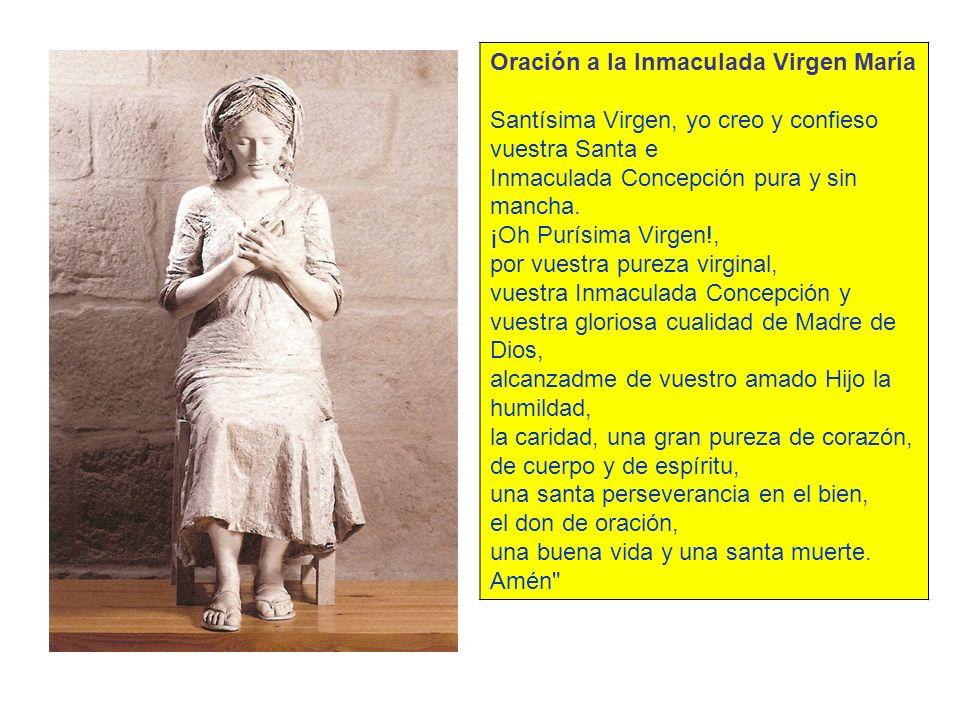Oración a la Inmaculada Virgen María Santísima Virgen, yo creo y confieso vuestra Santa e Inmaculada Concepción pura y sin mancha. ¡Oh Purísima Virgen