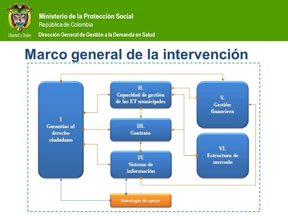 Ministerio de la Protección Social República de Colombia Dirección General de Gestión a la Demanda en Salud Marco general de la intervención I Garantí