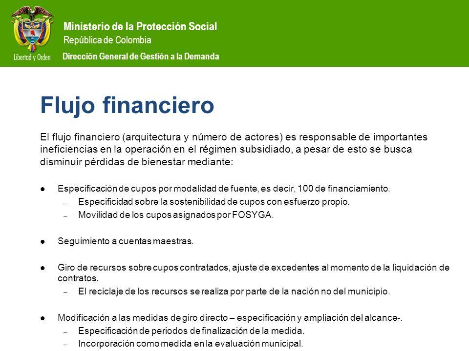 Ministerio de la Protección Social República de Colombia Dirección General de Gestión a la Demanda Flujo financiero El flujo financiero (arquitectura