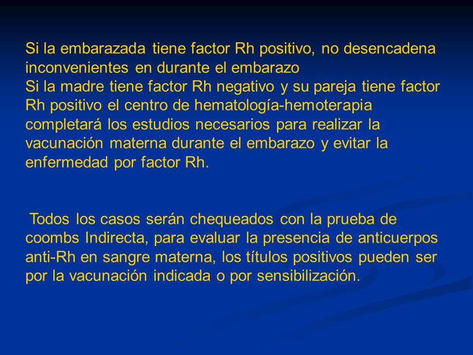 Si la embarazada tiene factor Rh positivo, no desencadena inconvenientes en durante el embarazo Si la madre tiene factor Rh negativo y su pareja tiene