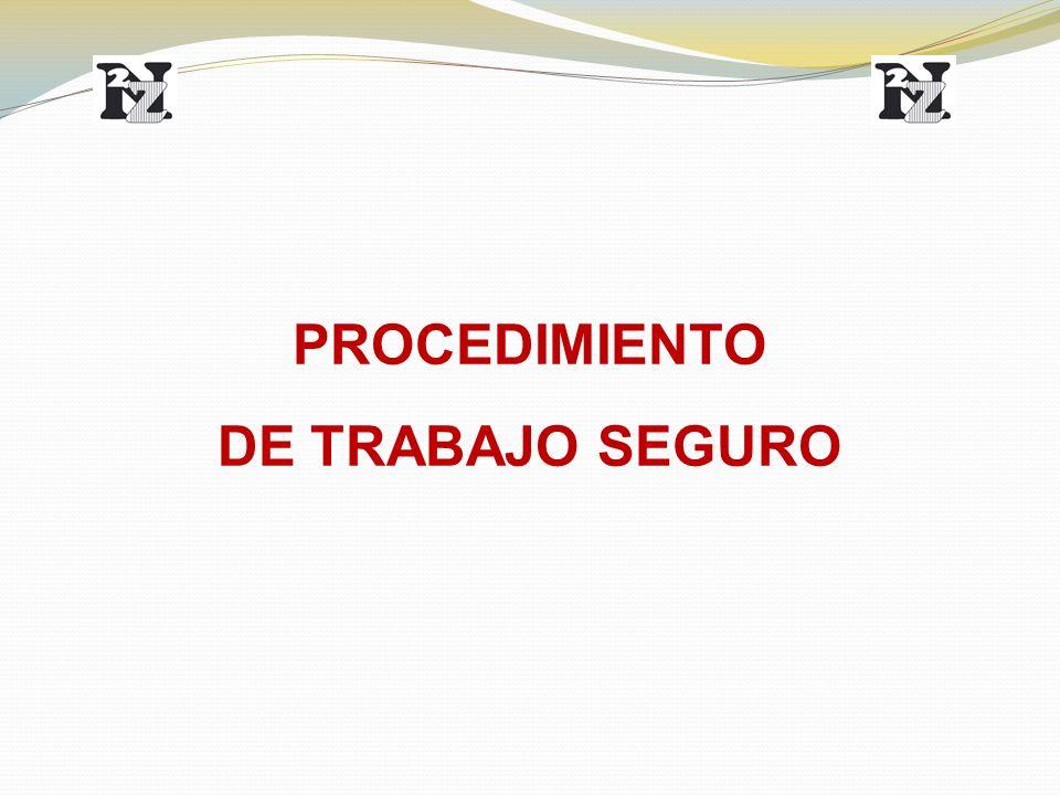 PROCEDIMIENTO DE TRABAJO SEGURO
