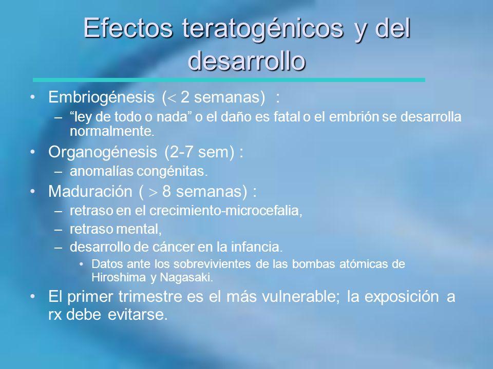 Efectos teratogénicos y del desarrollo Embriogénesis ( 2 semanas) : –ley de todo o nada o el daño es fatal o el embrión se desarrolla normalmente. Org