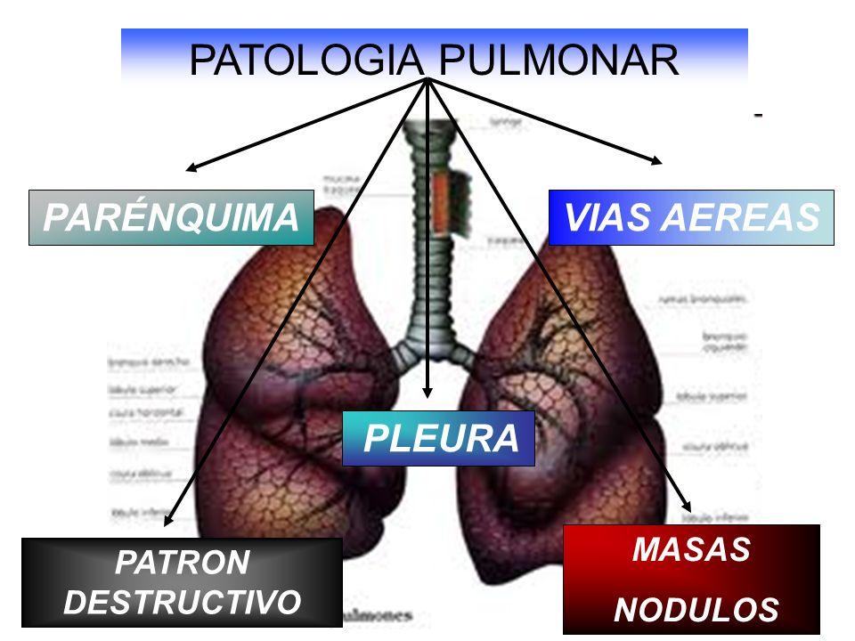 PARÉNQUIMAVIAS AEREAS MASAS NODULOS PATRON DESTRUCTIVO PLEURA PATOLOGIA PULMONAR