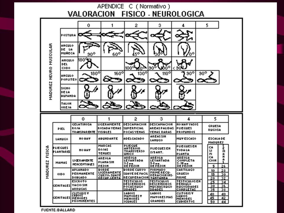 VALORACIÓN FETAL-OBSTETRICA DE VELASCO-CÁNDAMO PARAMETROS 0 1 2 1.