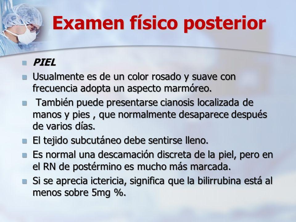 Examen físico posterior PIEL PIEL Usualmente es de un color rosado y suave con frecuencia adopta un aspecto marmóreo. Usualmente es de un color rosado