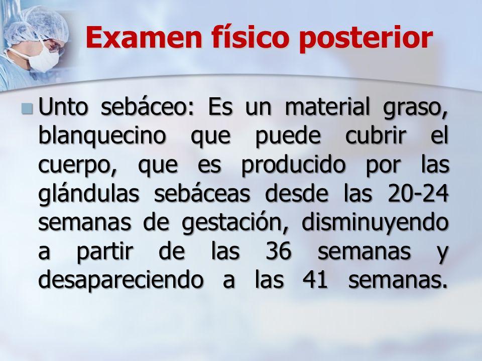 Examen físico posterior Unto sebáceo: Es un material graso, blanquecino que puede cubrir el cuerpo, que es producido por las glándulas sebáceas desde