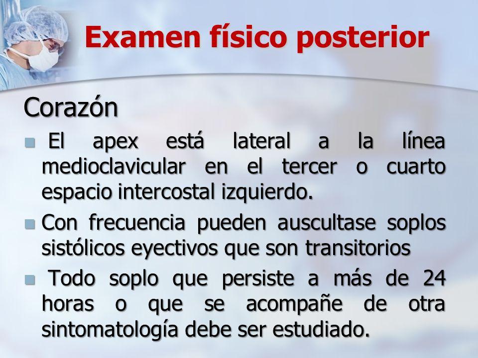 Examen físico posterior Corazón El apex está lateral a la línea medioclavicular en el tercer o cuarto espacio intercostal izquierdo. El apex está late
