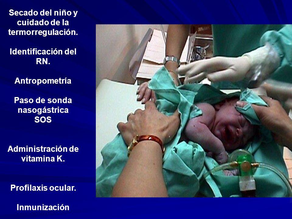 Secado del niño y cuidado de la termorregulación. Identificación del RN. Antropometría Paso de sonda nasogástrica SOS Administración de vitamina K. Pr