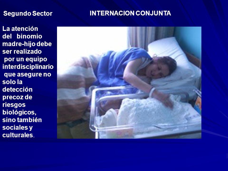 Segundo Sector La atención del binomio madre-hijo debe ser realizado por un equipo interdisciplinario que asegure no solo la detección precoz de riesg